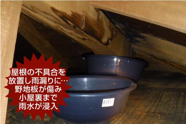 屋根の不具合を放置し雨漏りに… 野地板が傷み小屋裏まで 雨水が浸入