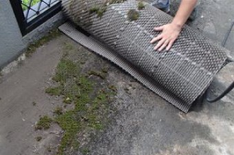 マットの下に生えた苔