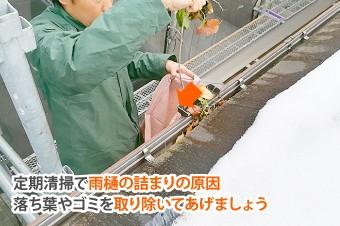 雨樋の落ち葉やゴミを取り除きましょう