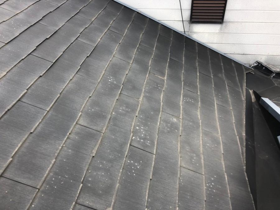 屋根伏見劣化