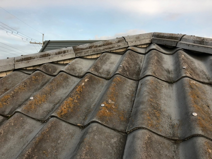 苔の発生した屋根