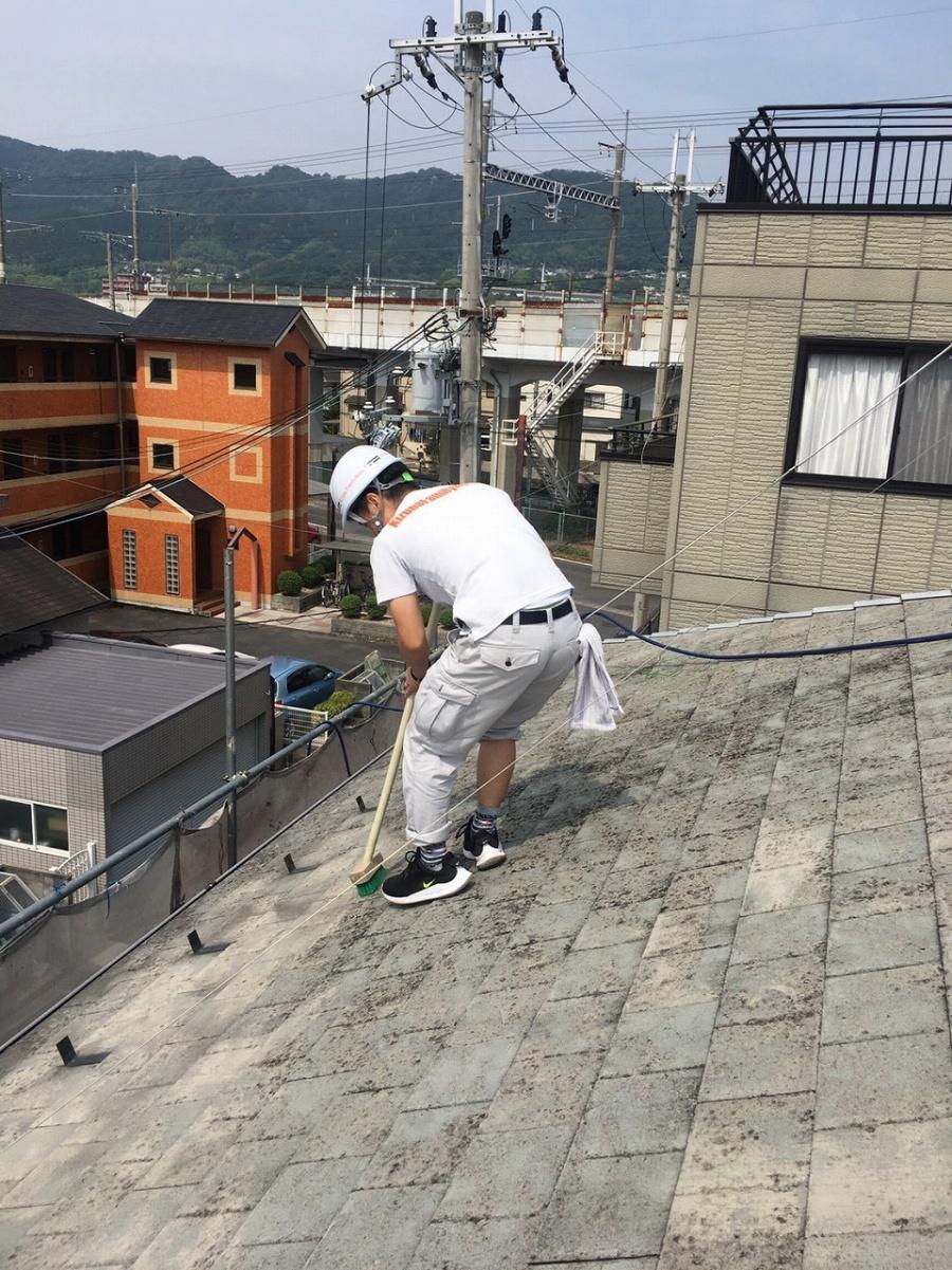 屋根苔落とし