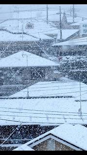 屋根の雪対策と落雪の危険対策