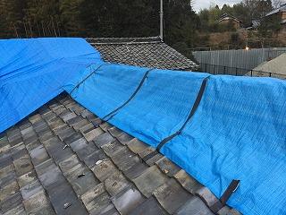 屋根の養生作業