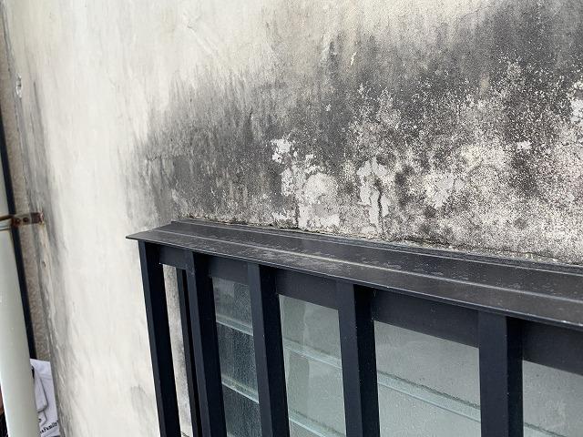 浴室廻りの壁