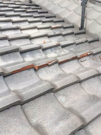 屋根の現場調査
