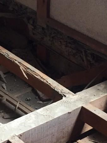 土台木部白蟻被害